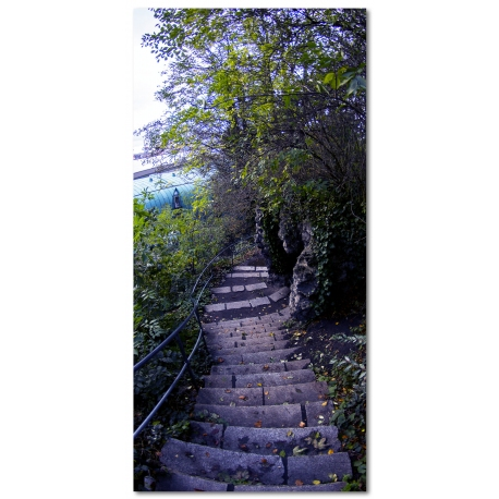 STEPS Limited Edition desde 179€